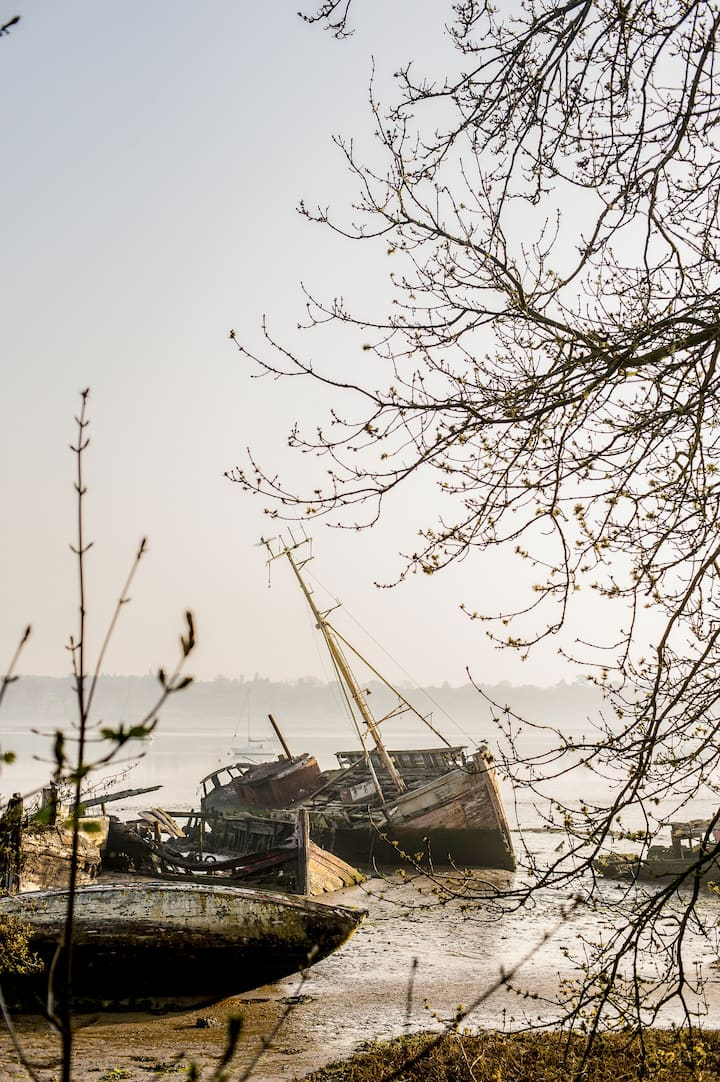 Shipwrecks on the River Orwell, Pin Mill
