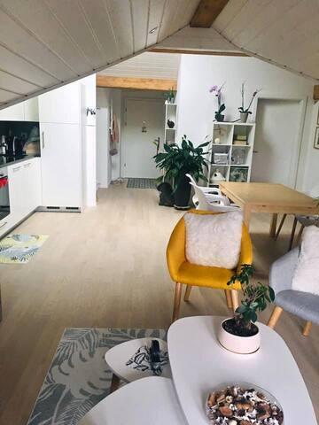 Magnifique appartement à Romont(Fribourg-Lausanne)