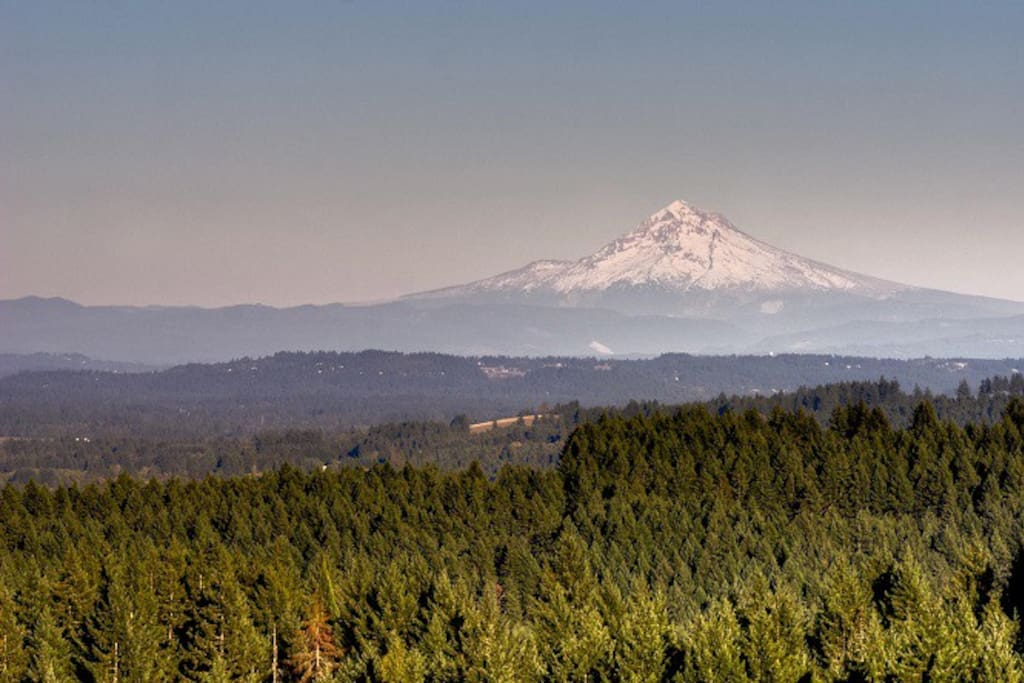 View of Mt. Hood from the property