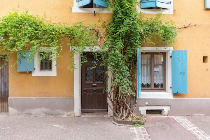 The Stork - Quiet Studio in the heart of Colmar