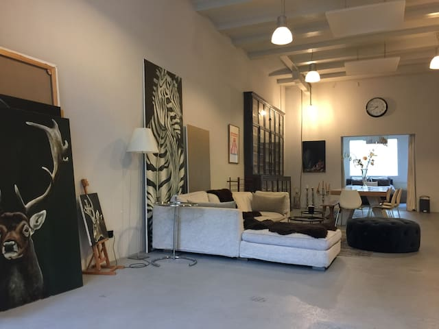 Spacious WHOLE loft with (limited) free parking