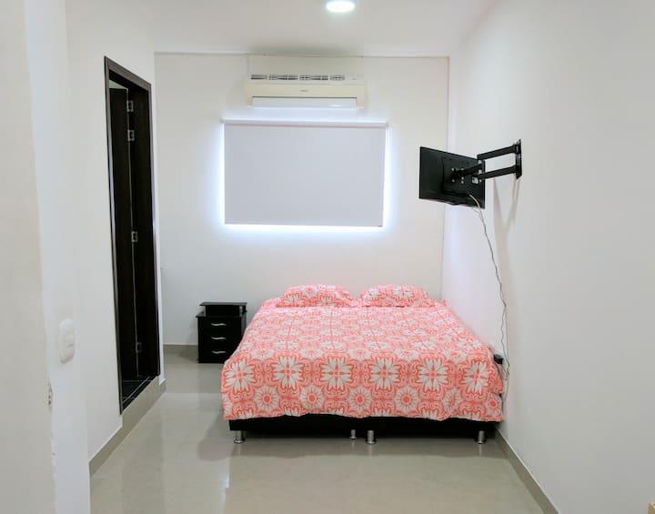 Apartaestudio 207 (2 habitaciones) Suite con Aire