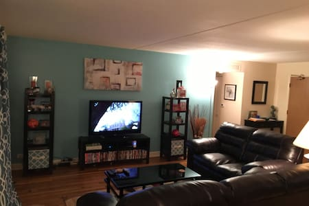 Upscale yet cozy - Schaumburg - Appartement