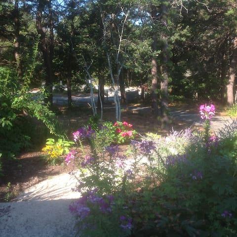 Provincetown Retreat II