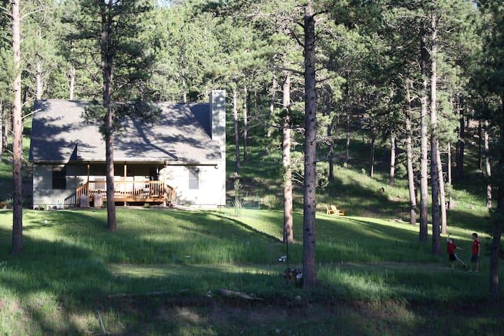 3BR house on 2 acres near Custer - Custer - House