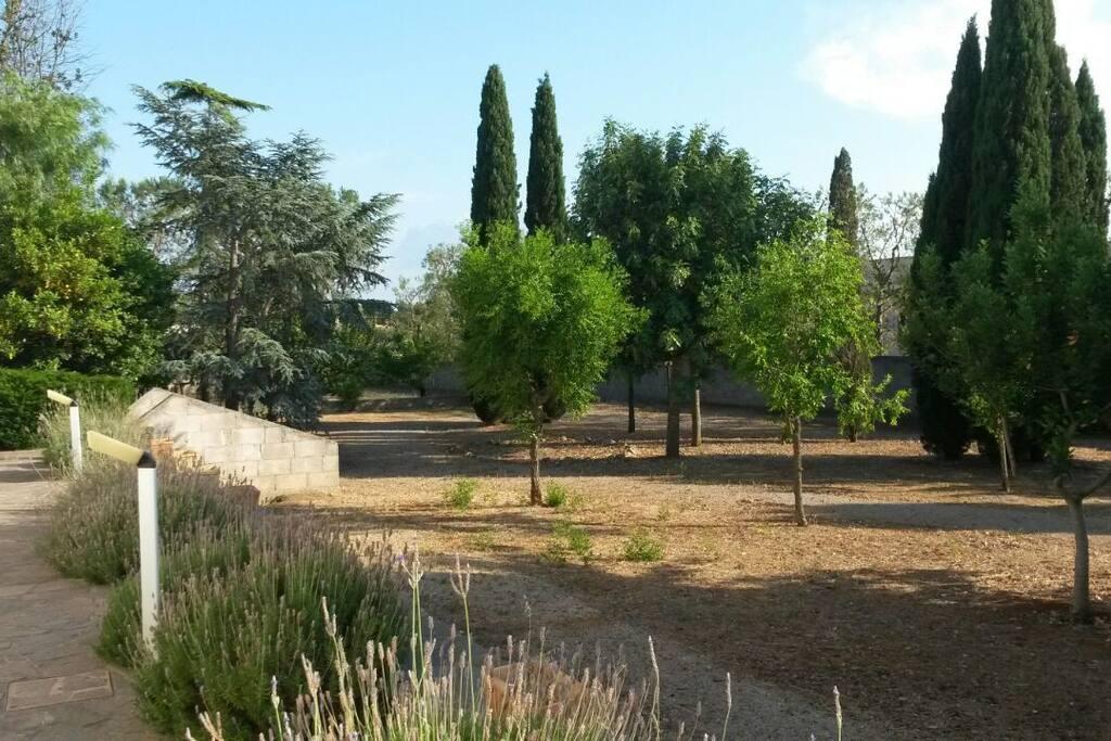 ampiezza e ricchezza del giardino