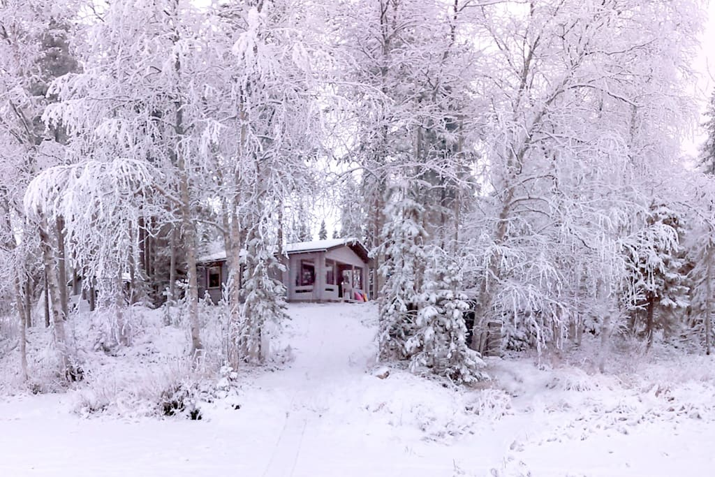 A traditional Lappish cabin in the wilderness