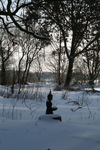 Buddah im Schnee