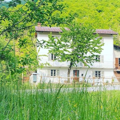 Elegant home in rural Piemonte - private pool