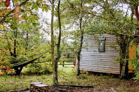 Cosy Shepherds Hut with Stunning South Downs View
