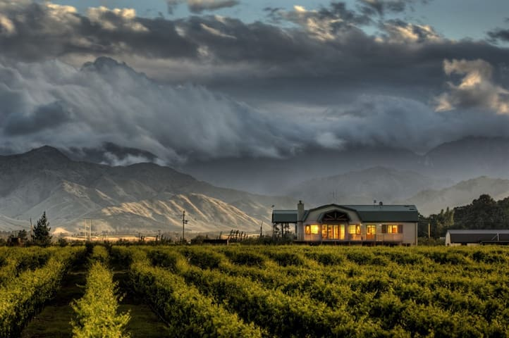Vineyard Cottage - Stunning views at your doorstep - Renwick - 獨棟