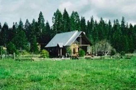 Historic Cozy Comfy Mountain Cabin