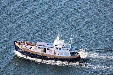 Scottishmarine safari cruise boat - Boat