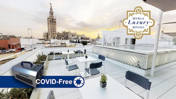 Sevilla Luxury Rentals - Catedral I