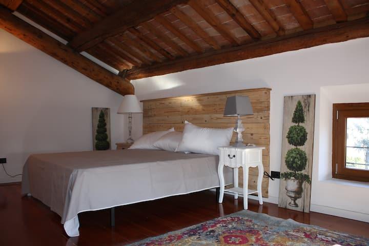 Suite Tipi - Fantastic suite in center of city