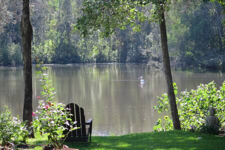 "Serenity by the Lake ""A Hidden Gem"""