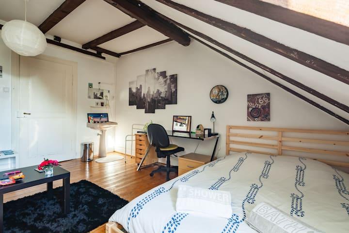 Spacious & Luminous Room