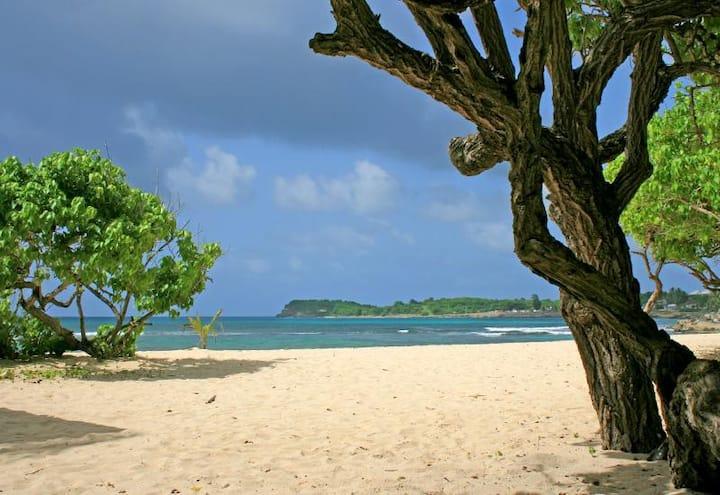 F2 meublé calme proximité plage