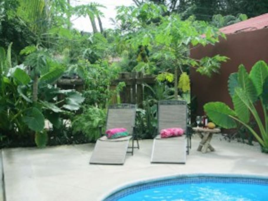 Villa las olas potrero beach villas for rent in potrero for Villas for rent in costa rica