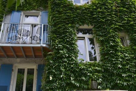 Sonniges Appartement mit Balkon - 达姆施塔特(Darmstadt) - 公寓