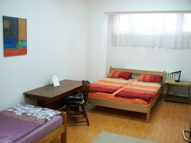 Downtown Good Location Apartment - Skopje - Apartemen
