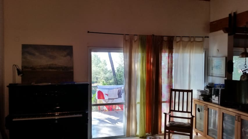 Maliniak house - 獨棟