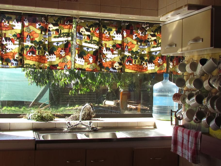 Cocina equipada con hermosa vista a la vegetación del exterior