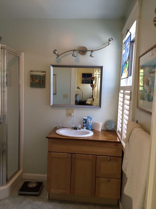 Well lit bathroom with large mirror, make up mirror, soap, shampoo, toothpaste, moisturizer, hair dryer & lots of fluffy towels