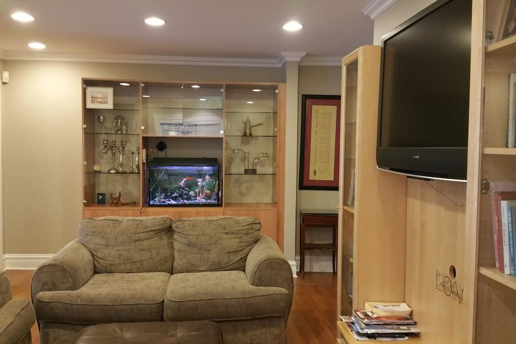 Living room / Tv area - Yes we do have fish