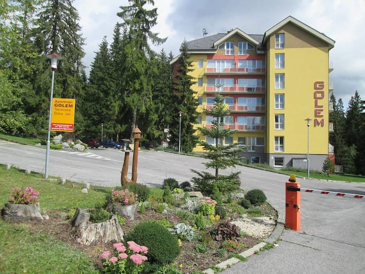 Romantic apartment in the heart of High Tatras