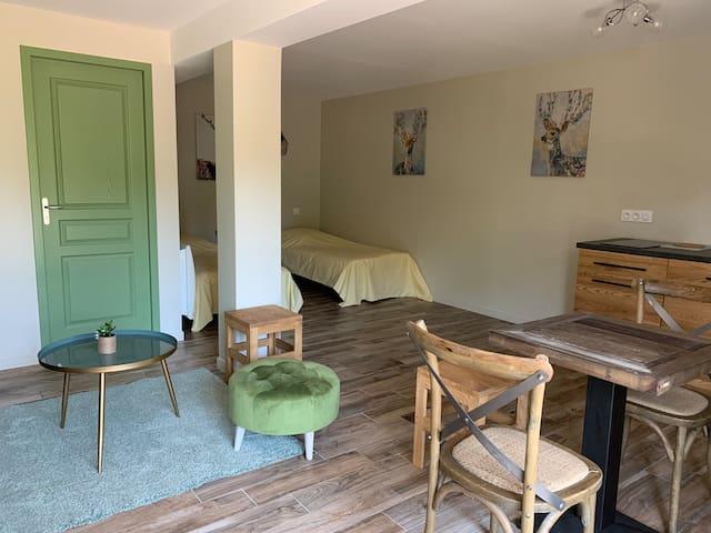JOUVENCE Studio Rez de Jardin près Abbaye et Lac