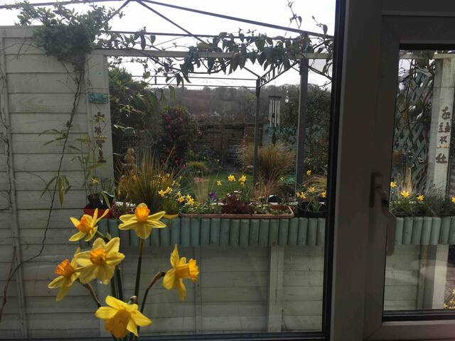 Lovely view from the kitchen window overlooking garden, feel free to use.