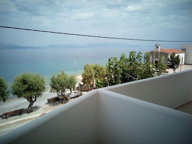 sunny spacious  house on the sea