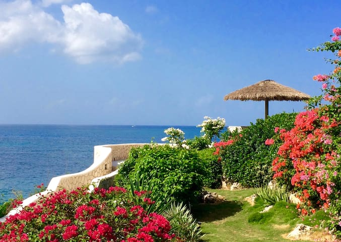 Private Beach & Amazing Tropical Garden in Negril