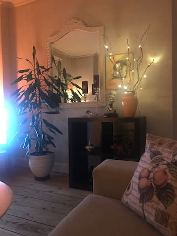 Spacious room in the heart of Copenhagen