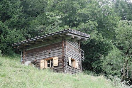 Idyllische Waldhütte inmitten unberührter Natur