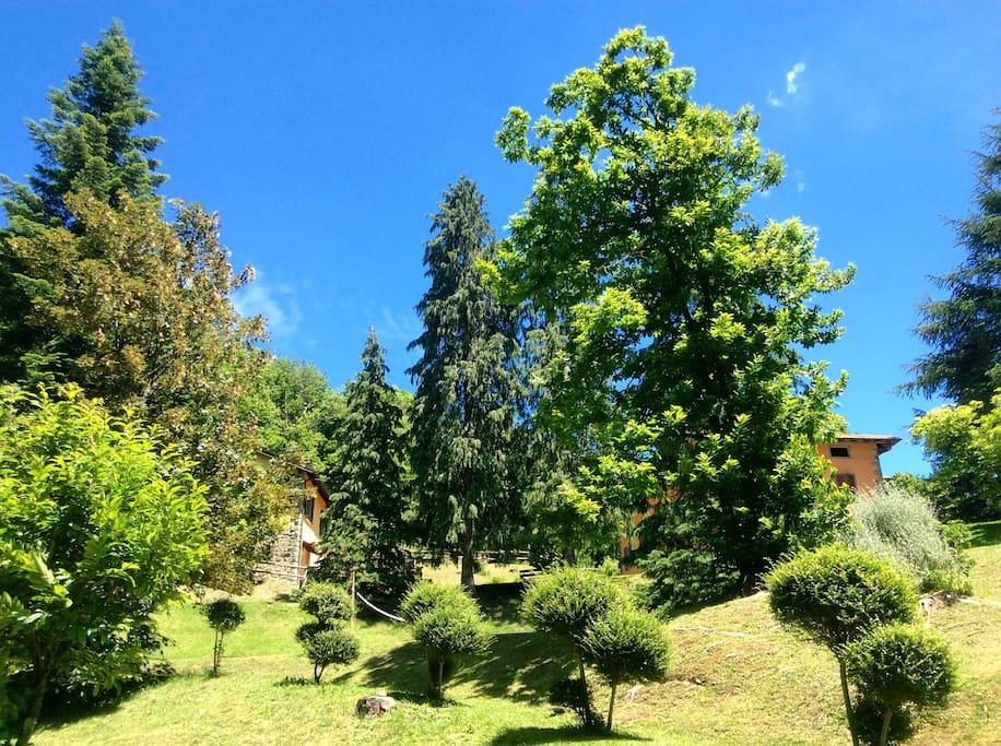 Il parco con la casina e la casa padronale