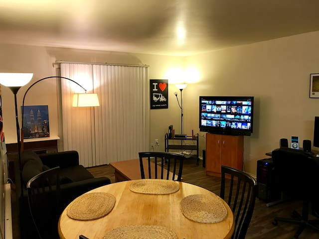 Cozy 1 Bedroom Apartment - Ann Arbor - Huoneisto