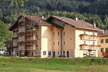 vacanze in Val di Fiemme Trentino - Ziano di Fiemme