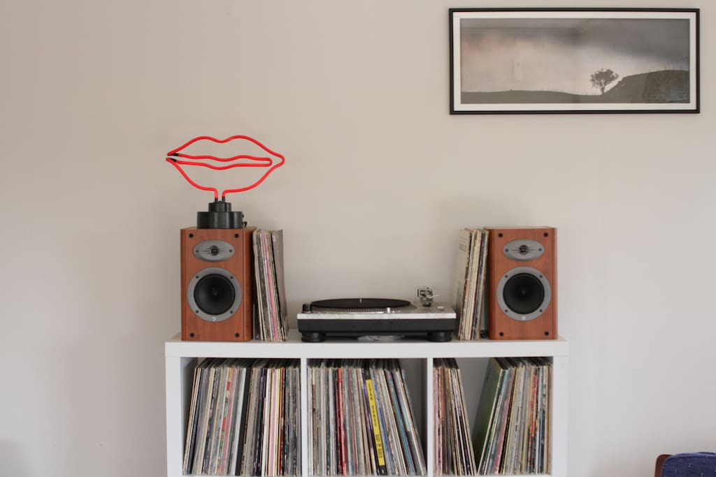 Our turntable/record shelf.