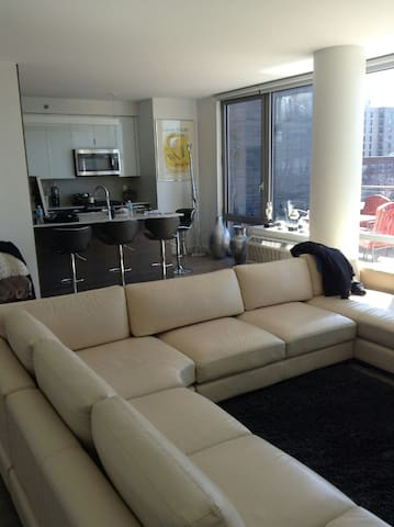 Magnificent views, Private Penthouse, All welcome! - Queens  - Квартира