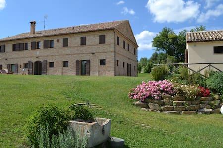 Casa e Chiesa Templare - Osimo