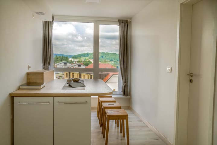 GGF-Small Grey Green and fun Apartment Novo mesto
