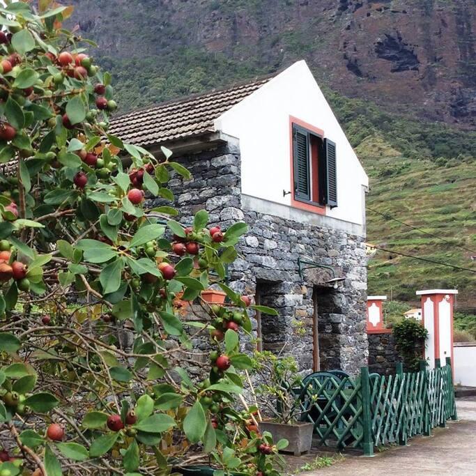 Quinta da Vila Palheiro