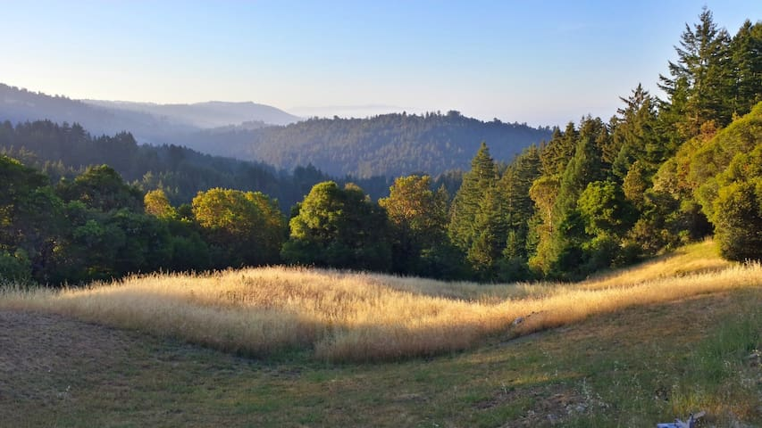 Corralitos Mountaintop with Views and Redwoods - Watsonville - Haus