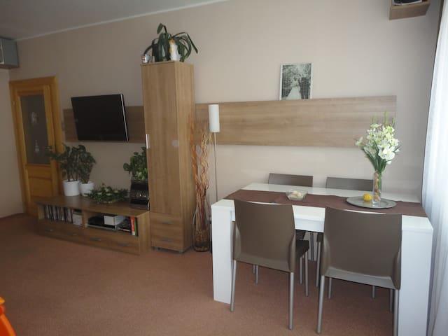 Útulný a klidný byt, Liberec - Liberec - Apartment