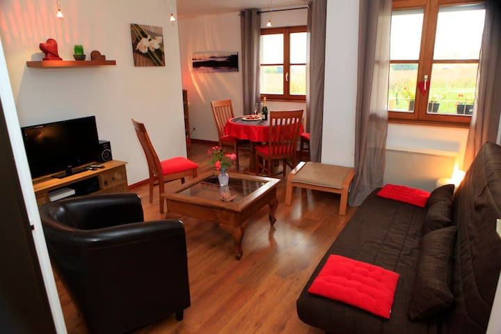 Charming Flat in Riquewihr ALSACE