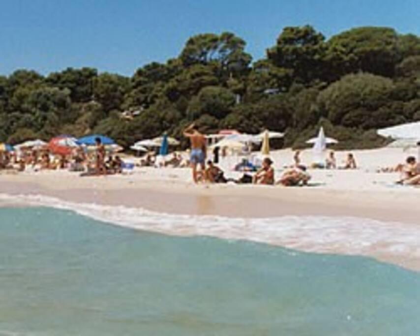 la spiaggia vicino a casa