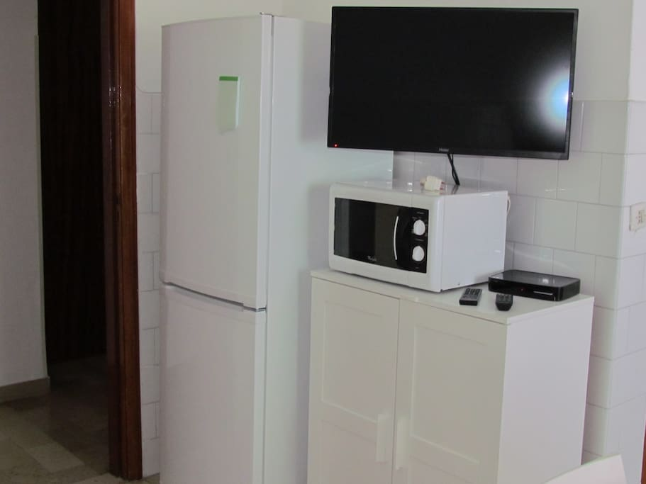 The satellite Tv, microwave and of course....the fridge!