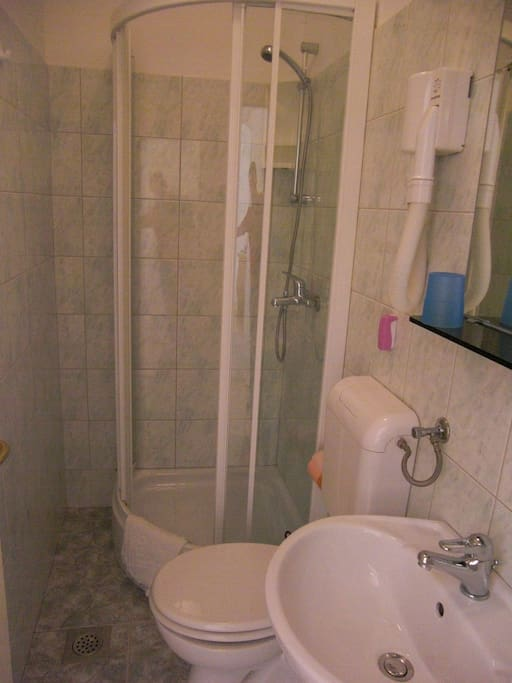 The private bathroom of the Studio including shower, WC and hairdryer